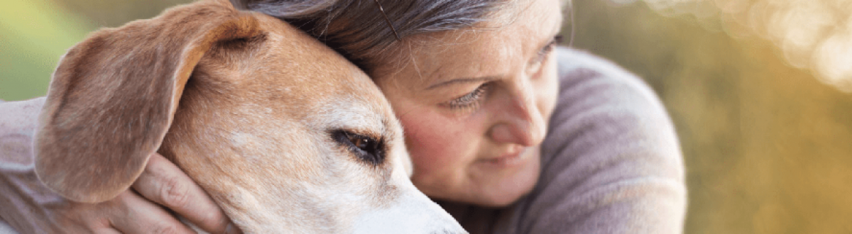 Animal Aided Interventions
